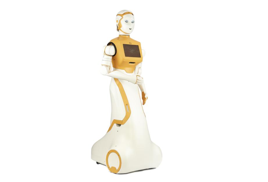 ARI Robot